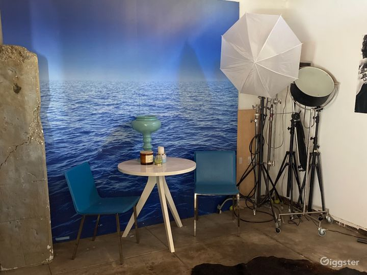 Art Gallery / Photo Studio Scenes