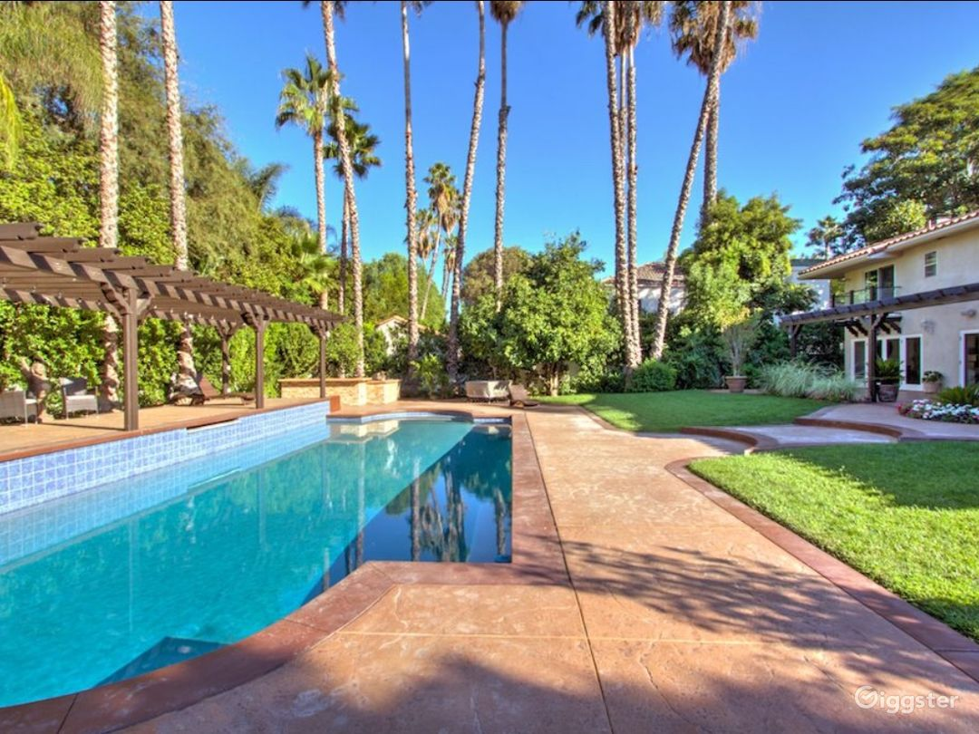 Beautiful backyard 12-14 palm trees