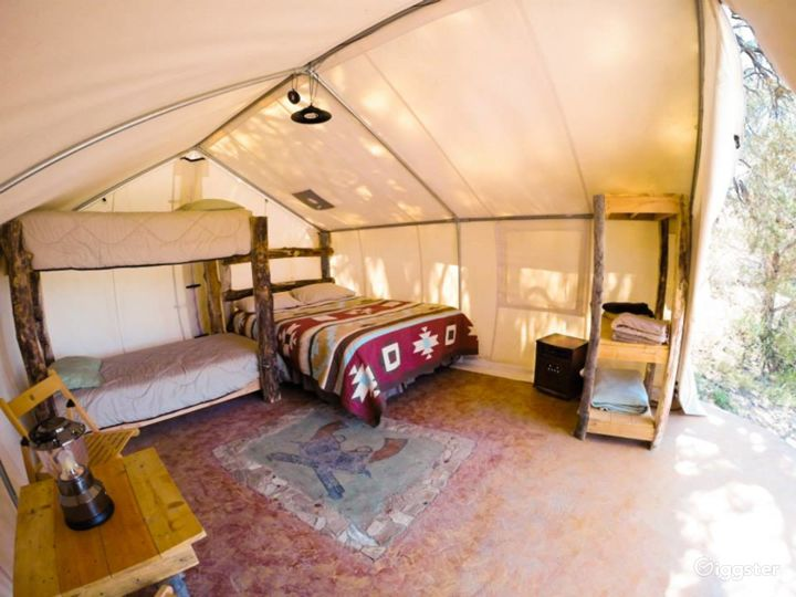 Traditional Yurts with Mongolian Touch Photo 2