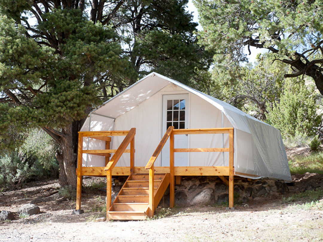 Traditional Yurts with Mongolian Touch Photo 1