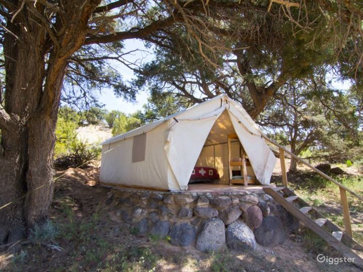 Traditional Yurts with Mongolian Touch Photo 4