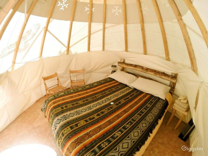Traditional Yurts with Mongolian Touch Photo 3