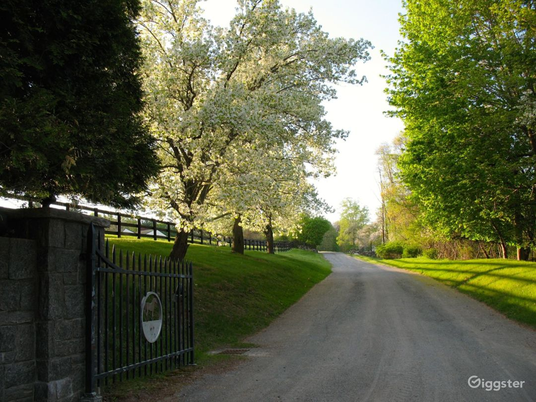 View from road at entrance of farm