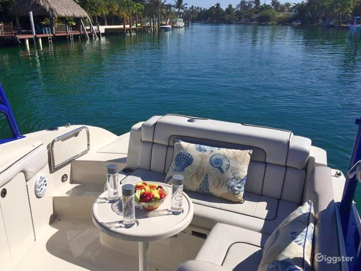 Homey 26FT Sea Ray Pelican Party Boat Space Events Photo 2