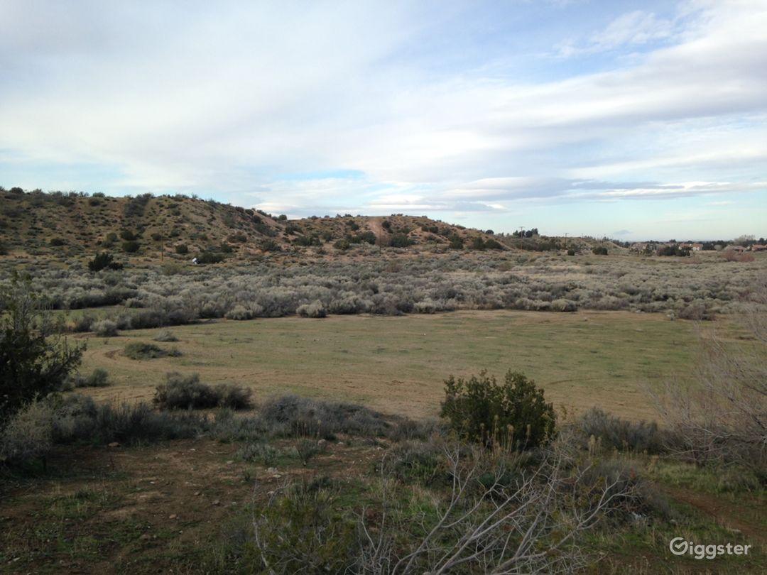 Classic Western Desert Land with Joshua Trees Photo 5