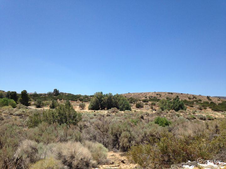 Classic Western Desert Land with Joshua Trees