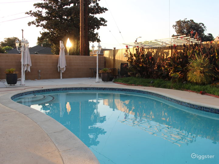 Large Backyard with Pool (lights up at night) Photo 3