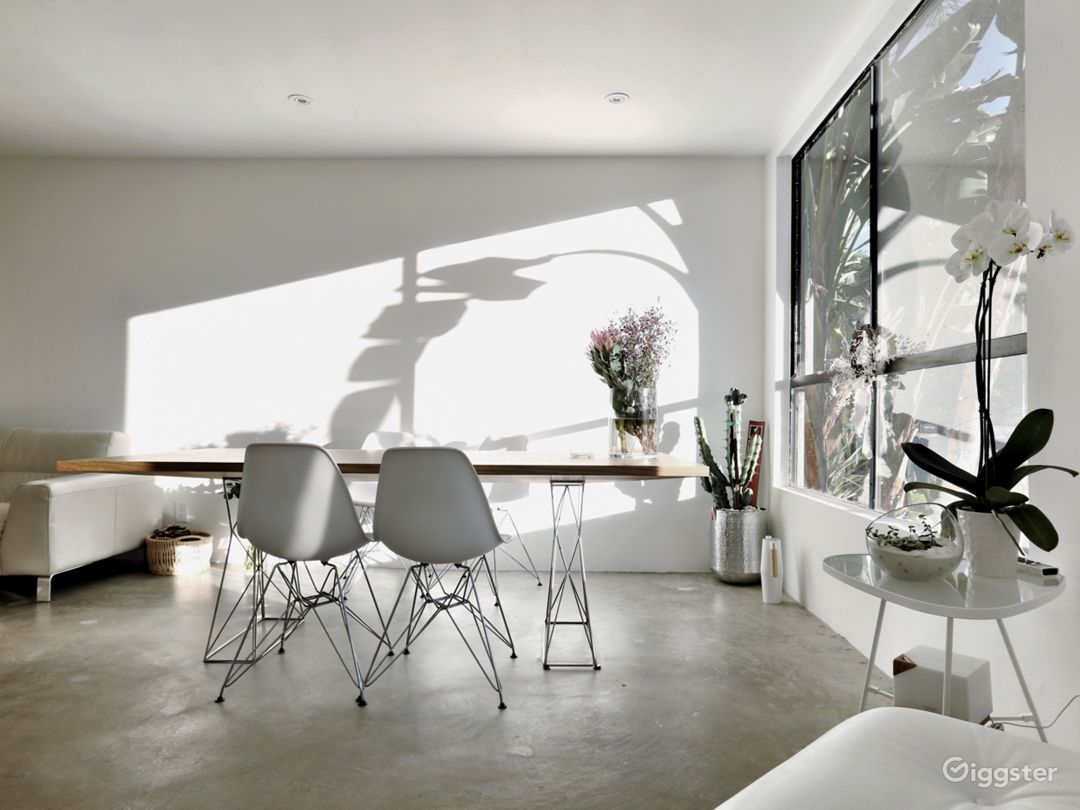 Beautiful morning shadow of the recognizable Californian nature. Concrete floor has an character.