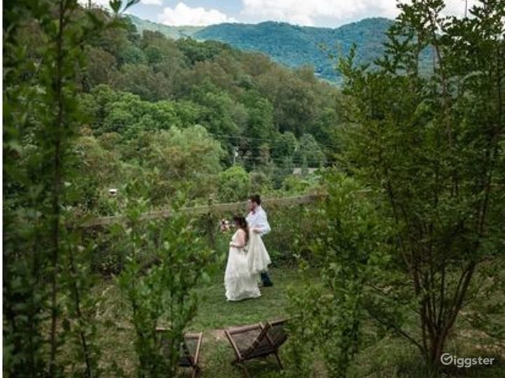 Enchanting and Vast Open Space in Asheville Photo 4
