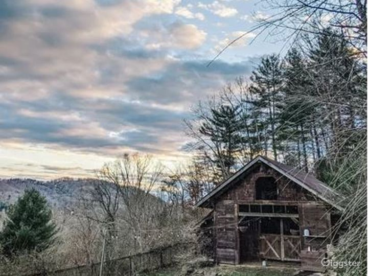 Enchanting and Vast Open Space in Asheville Photo 2