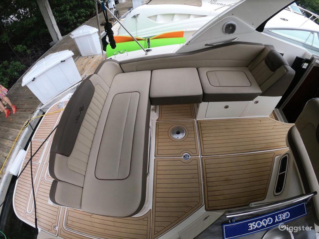 Captivating 35FT Sea Ray Marina Party Boat Space Events Photo 1