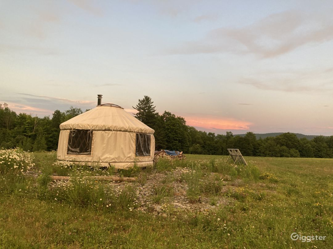 Yurt in 12 acre meadow