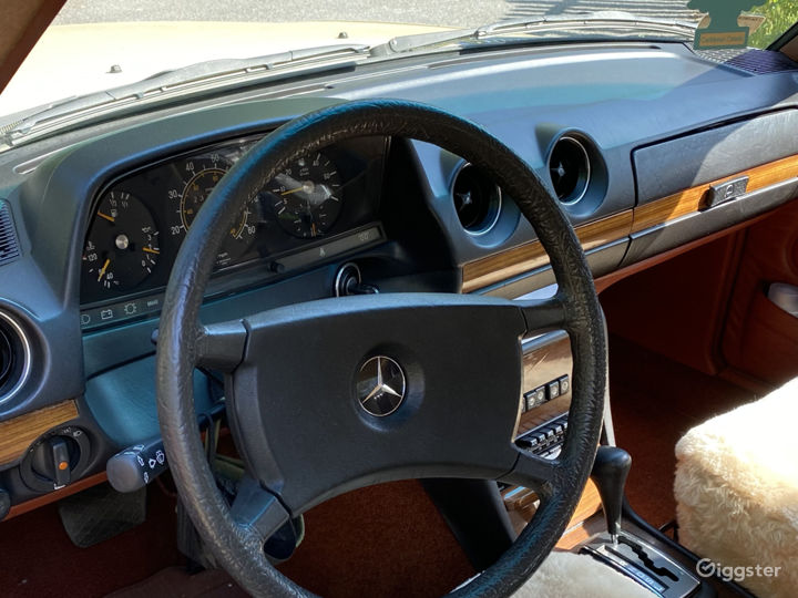 Classic 1982 Mercedes-Benz 300d Available for Rent Photo 3