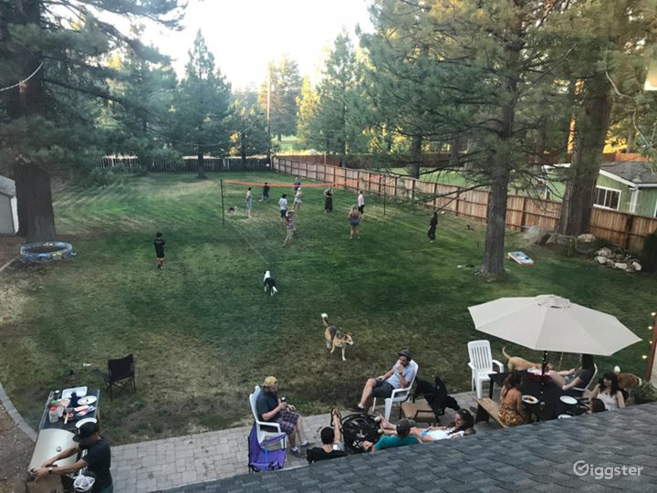 Back yard from above