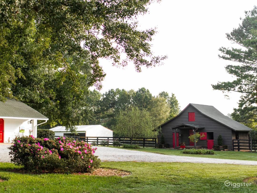New-Nan Farm in the City of Homes - Newnan GA Photo 3