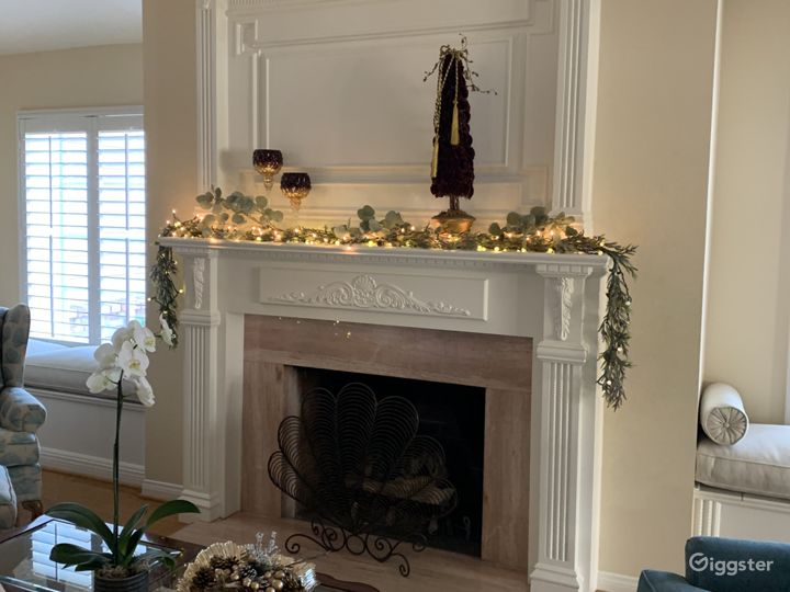 Living room marble fireplace and mantle
