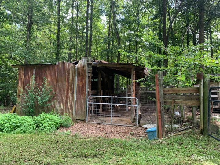 Nature Tamer Farm  Photo 5