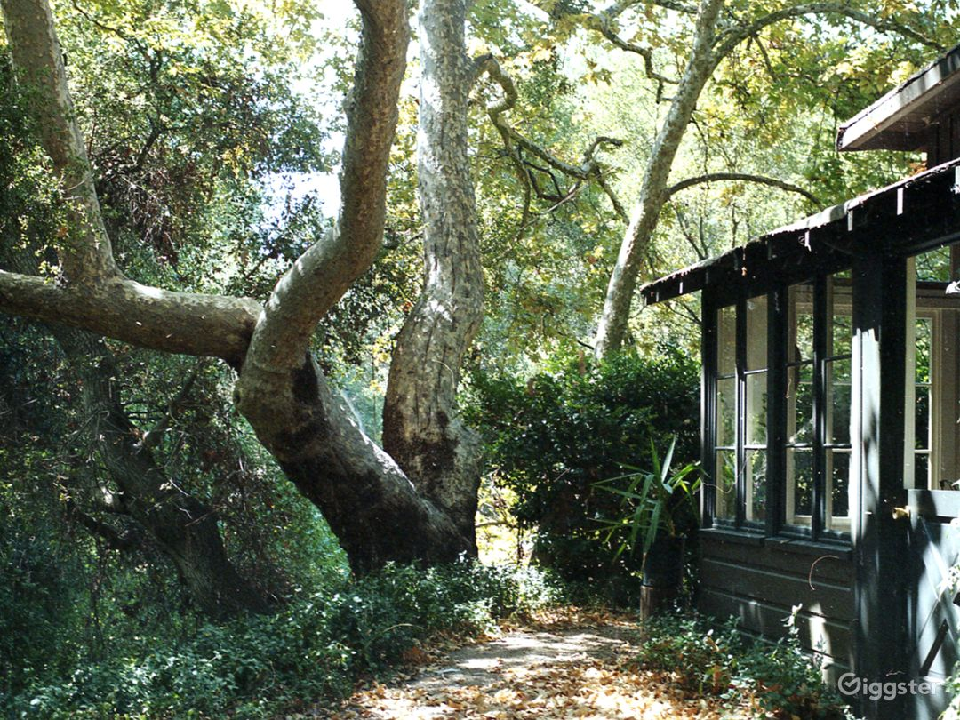 Rustic Creekside Cabin Photo 1