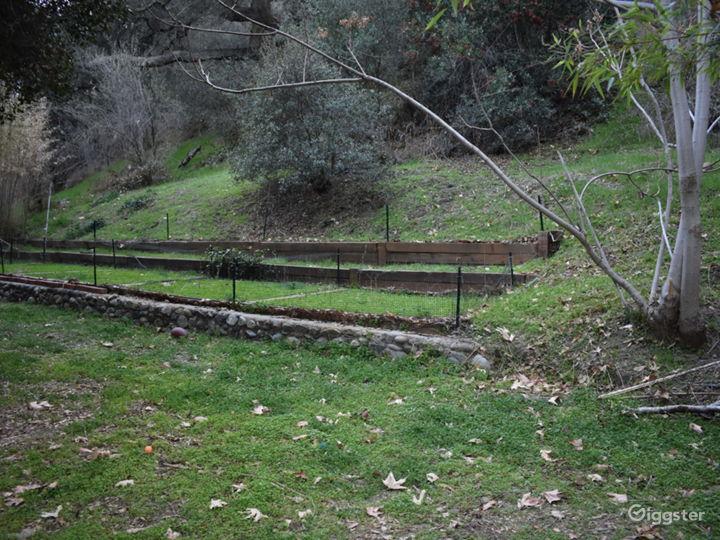 Rustic Creekside Cabin Photo 4