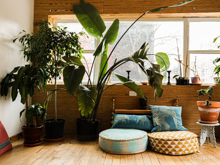 Well Designed Earthy, Green Space w/Natural Light Photo 4