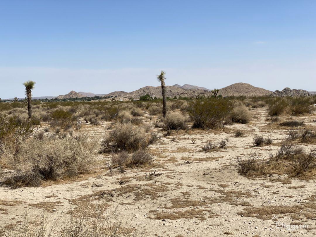 Open Desert Location! Photo 1