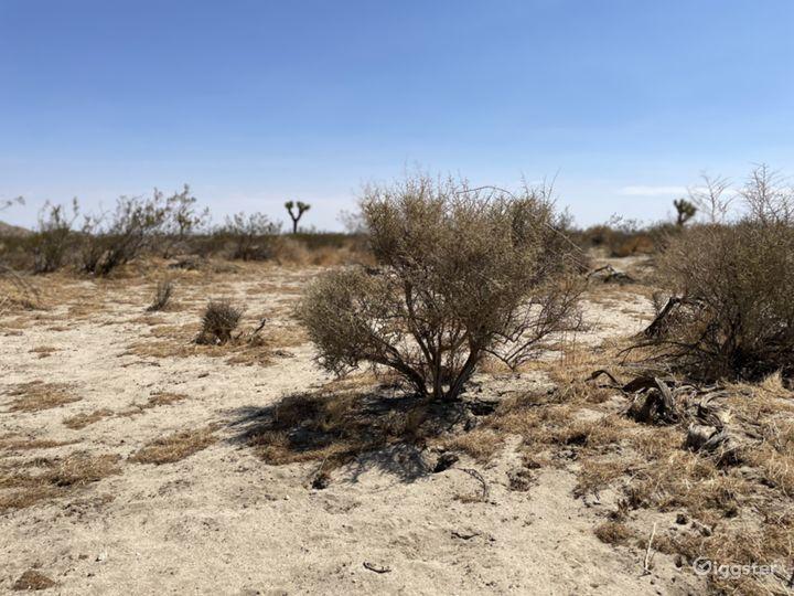 Open Desert Location! Photo 4