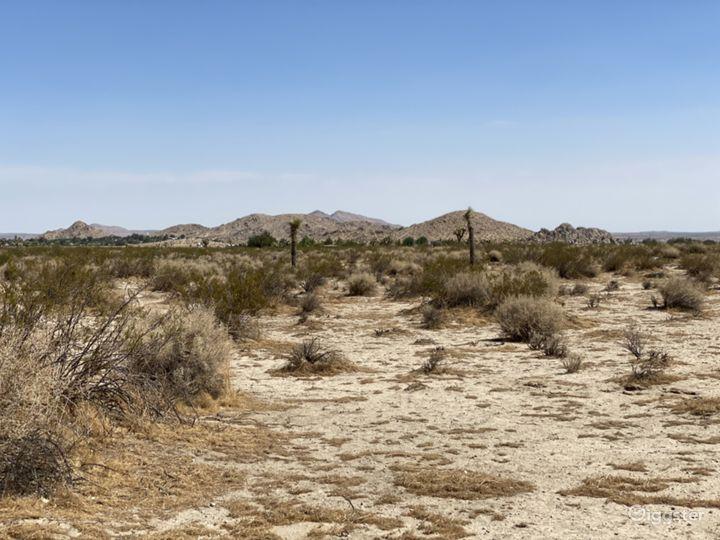 Open Desert Location! Photo 5