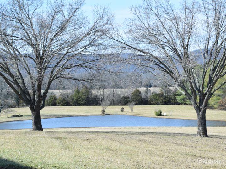 Beautiful 20-acre Private Estate in Virginia  Photo 4