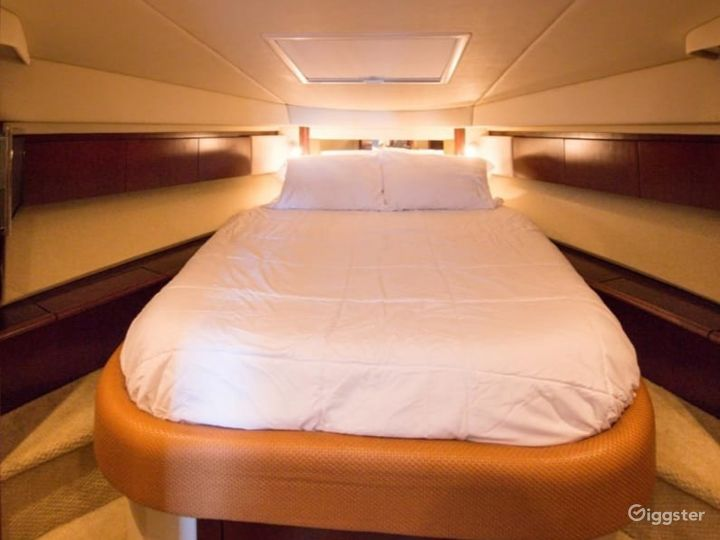 Exceptional 45FT SEA RAY FLYBRIDGE Party Yacht Space Events Photo 4