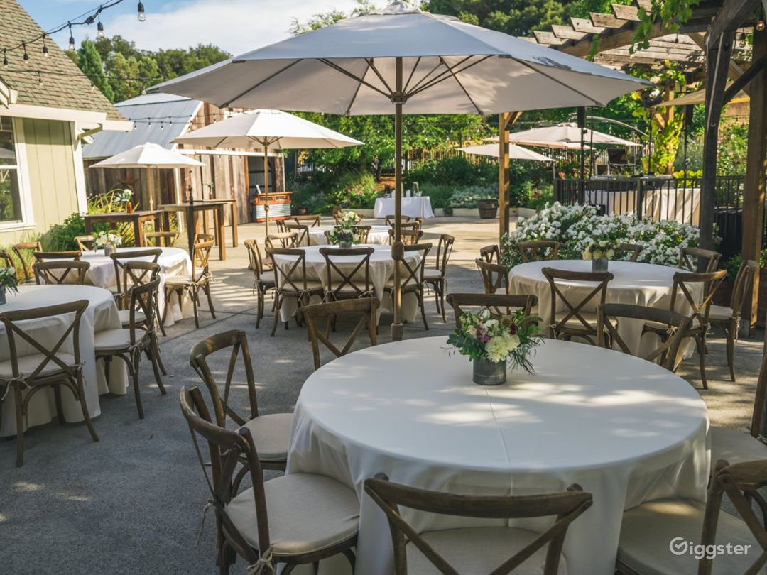 Outdoor Patio in California Wine Country Photo 1