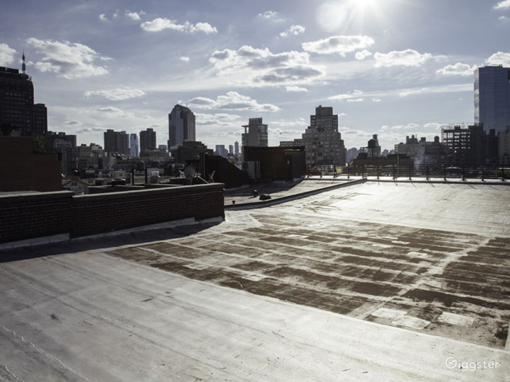 NYC apartment with roof access: Location 5071 Photo 3