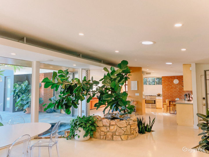 1954 Midcentury Modern Home with large pool/garden