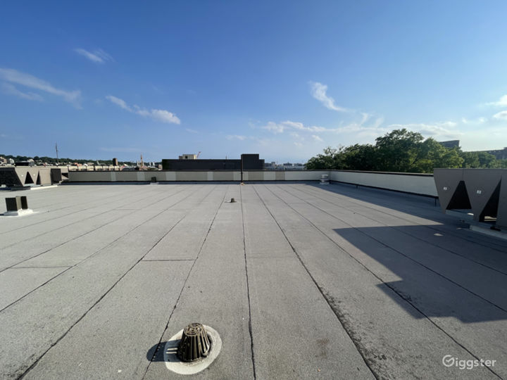 Rooftop with Manhattan and Brooklyn views  Photo 4
