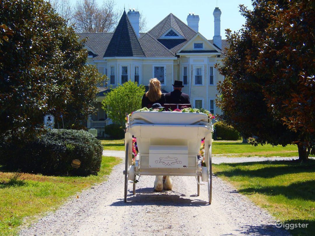 A carriage ride up Magnolia Way approaching the huge Victorian home.