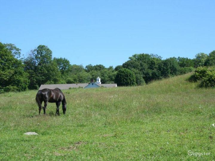 Working organic farm: Location 4227 Photo 2