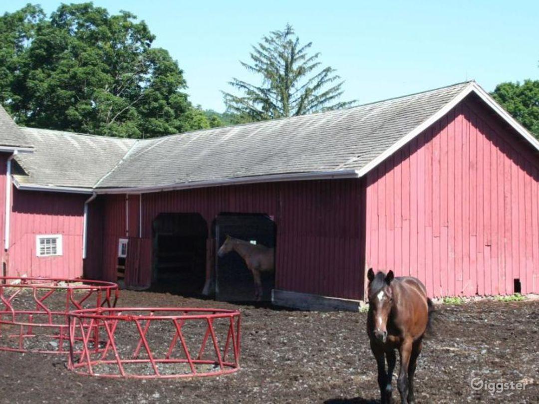 Working organic farm: Location 4227 Photo 1