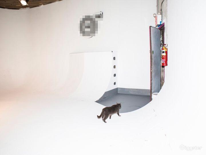 Production Film Studio// Skateable cyc!