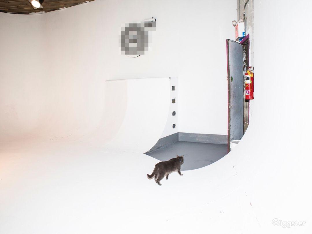 Production Film Studio// Skateable cyc! Photo 1