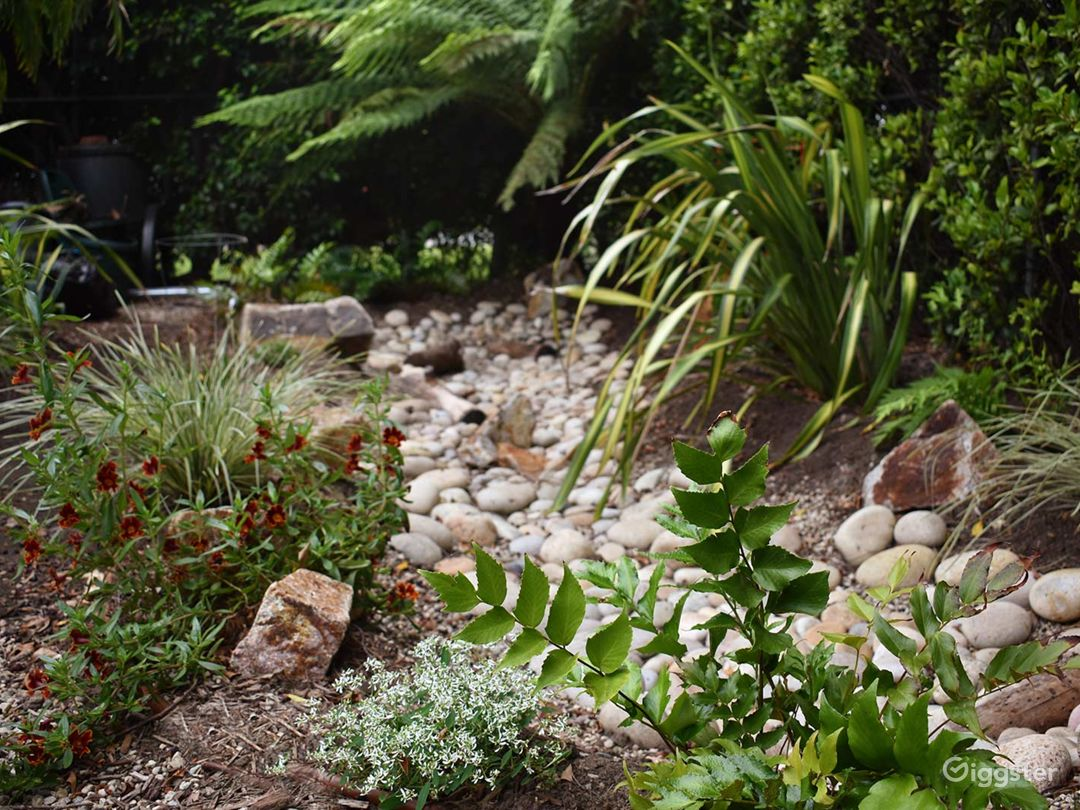 The front yard features a rain garden creek bed that fills with water when it rains ... and then drains slowly into the water table underneath.