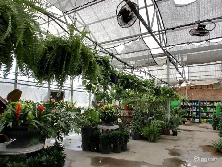 Greenhouses with selection of tropical plants