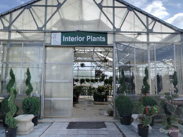 Greenhouses with selection of tropical plants Photo 3