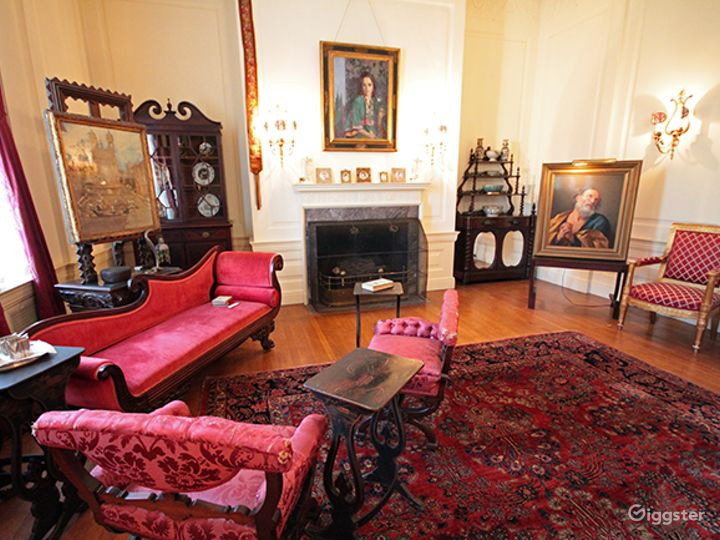 Presidential Style Drawing Room Photo 3