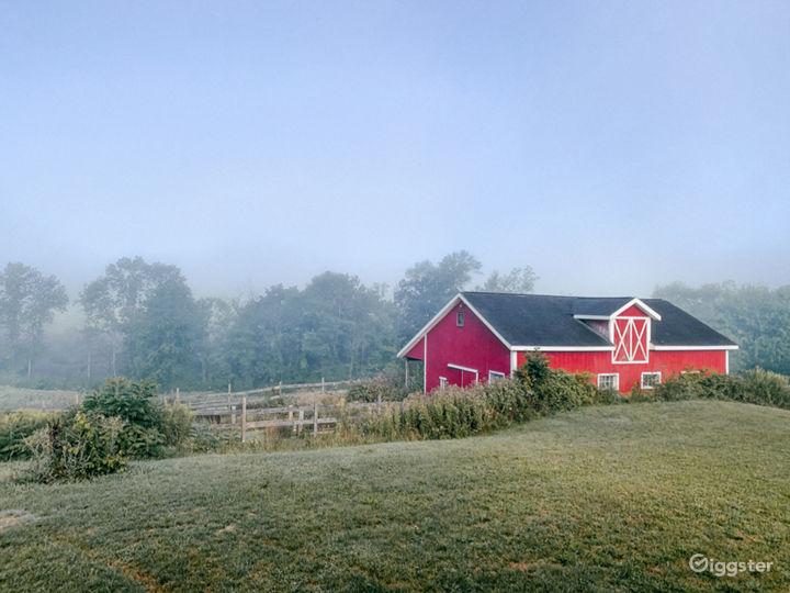 Pastoral Farm & Meadows Photo 2