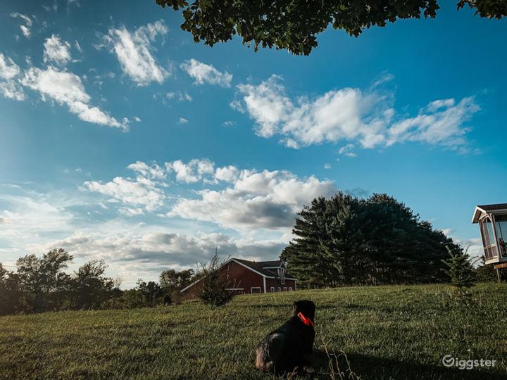 Pastoral Farm & Meadows Photo 5