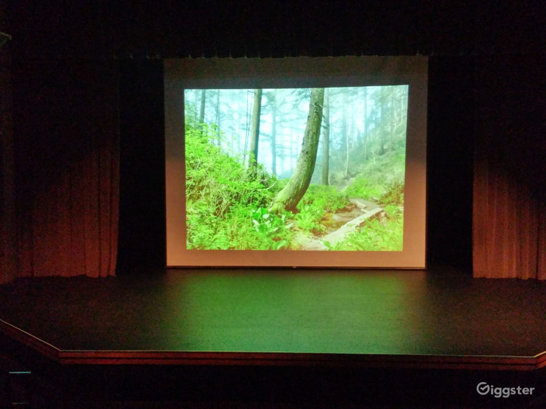 20'X20' film screen using our digital laser projector