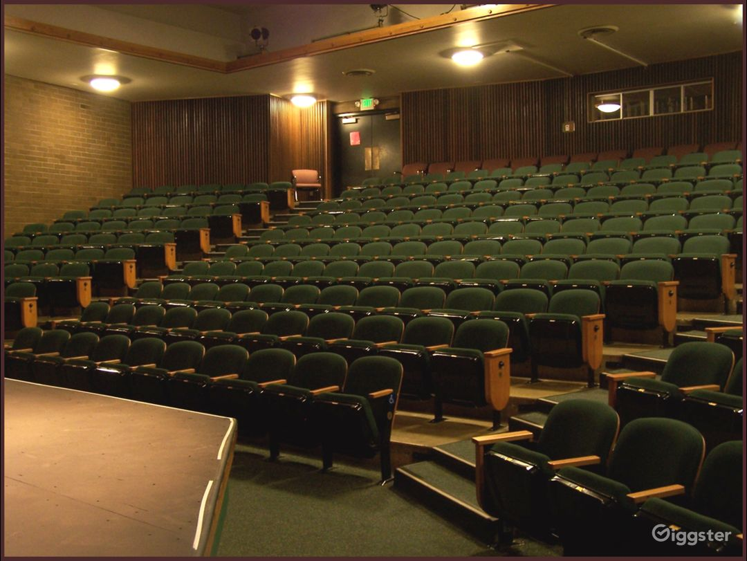 Auditorium seating, not a bad seat in the house.