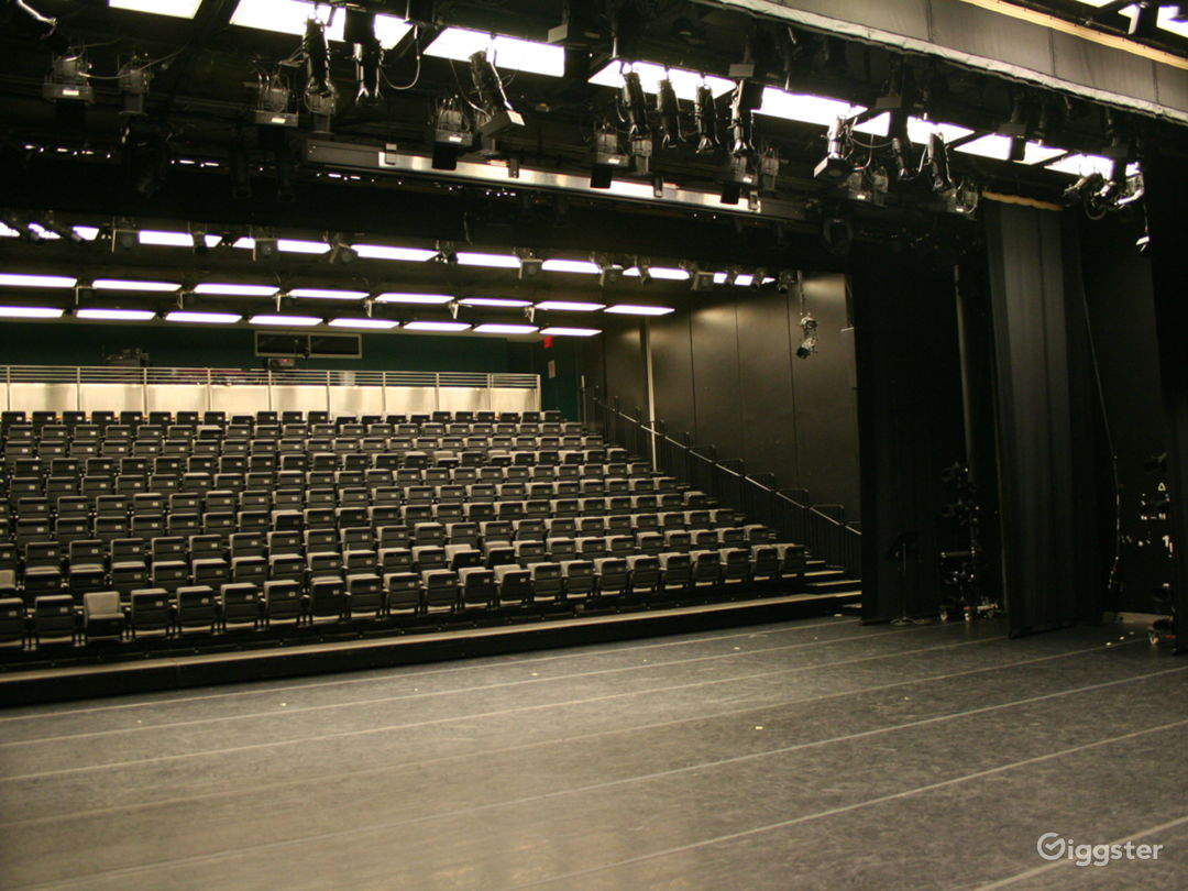 View from stage of 275-seat Ailey Citigroup Theater