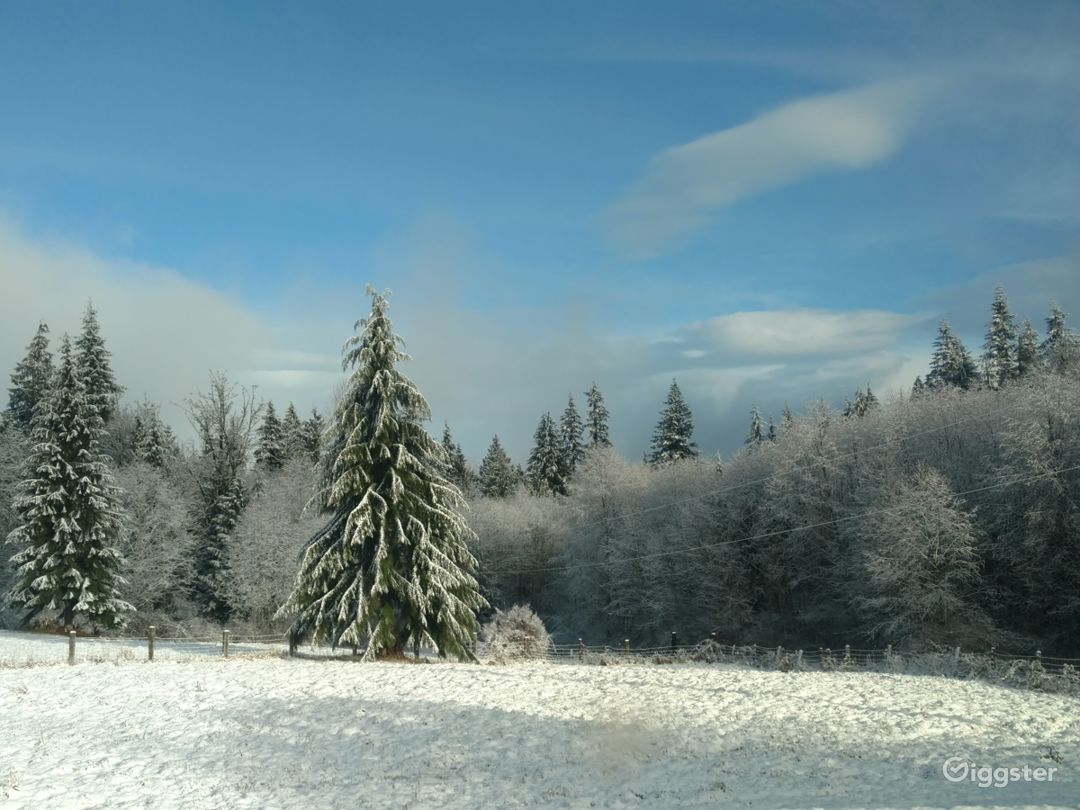 Snow covered fields.