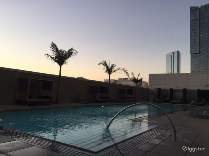 Lavish Terrace with Amazing Pool in LA Photo 4