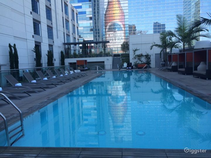 Lavish Terrace with Amazing Pool in LA Photo 3